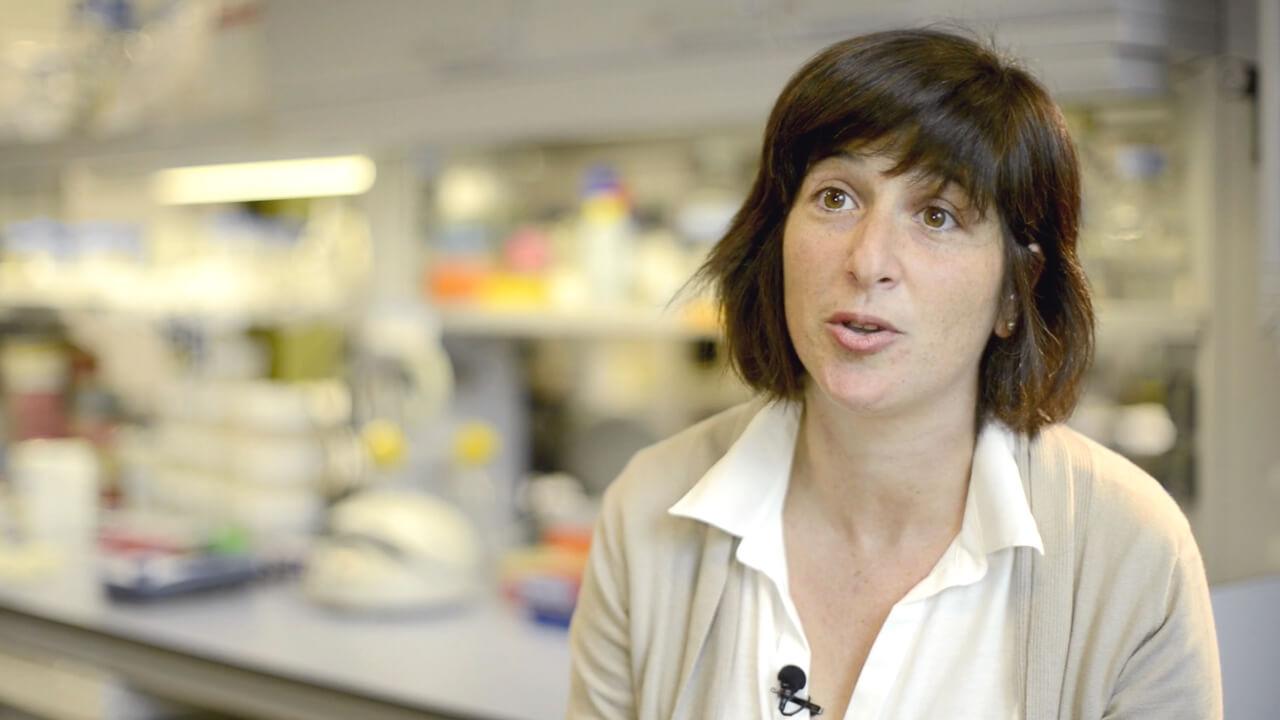 fotograma video women science